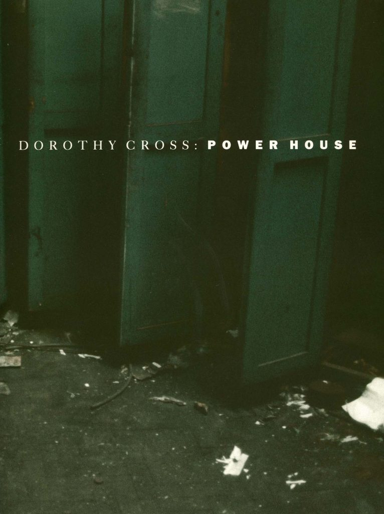 Dorothy Cross: Power House product image